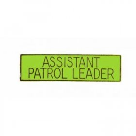 Guide Assistant Patrol Leader Pin
