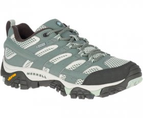 Womens Moab II GTX Shoe - Laurel