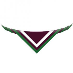 3rd roscommon neckerchief